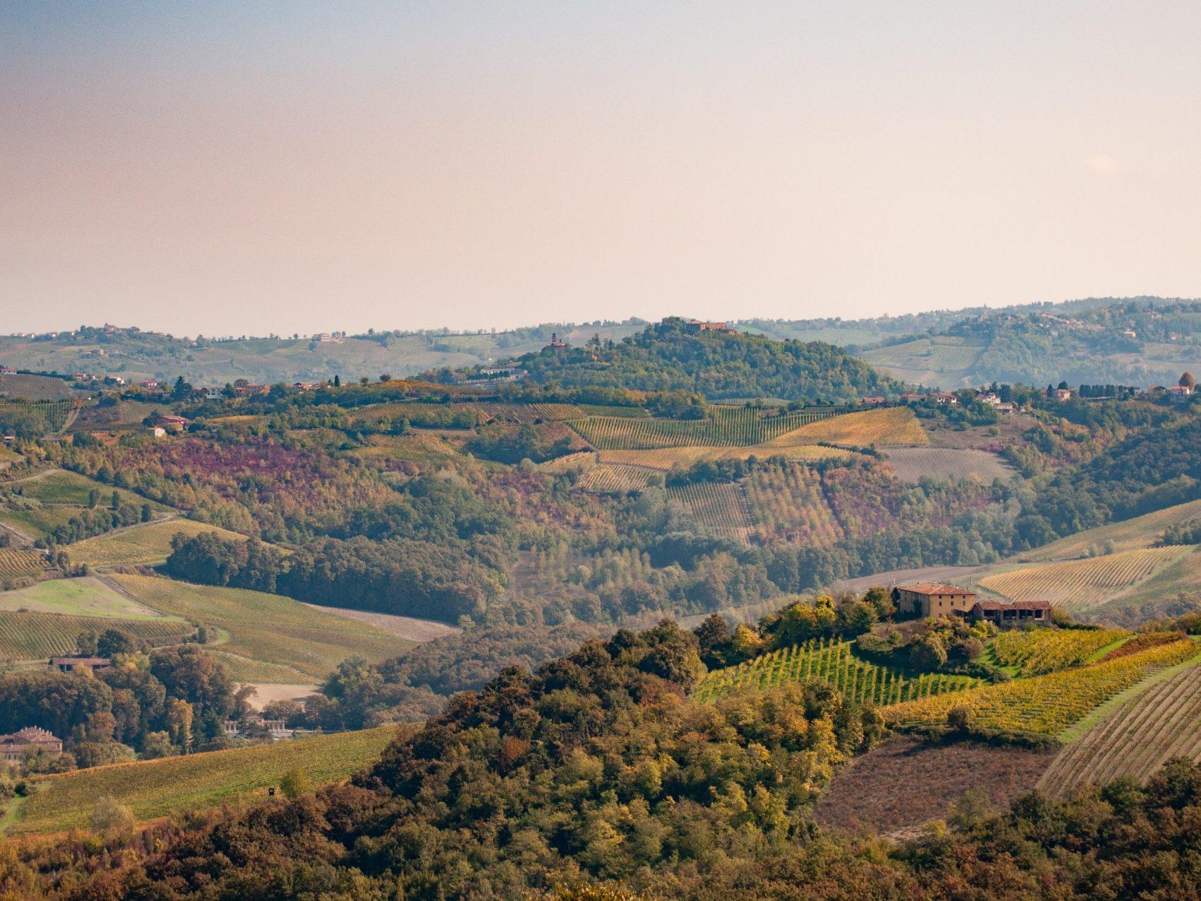 Glücksein mit drei Wörtern: Wein, Trüffel und sanften Hügeln. Willkommen in den Langhe!