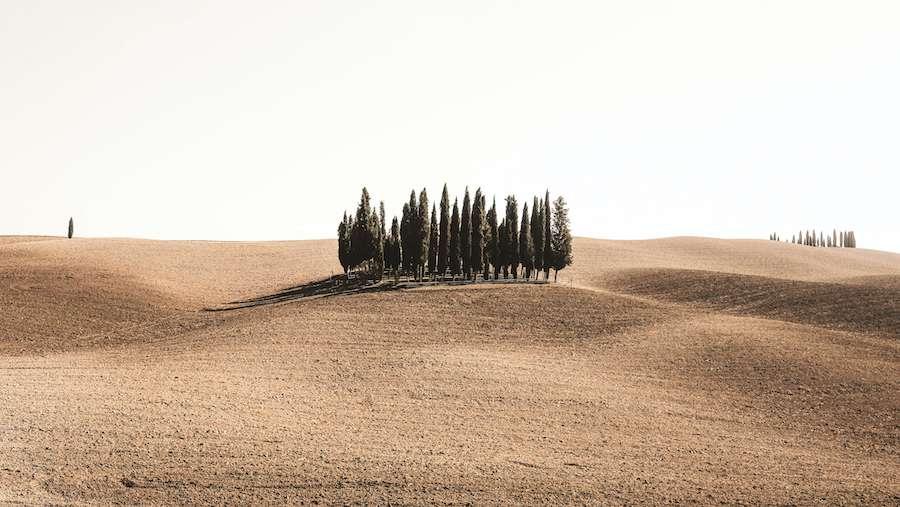 Gruppenreisen in die Toskana: Val d'Orcia, wo sich Renaissance und Natur zur Harmonie vereinigen